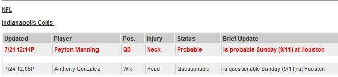 XML Injury Report Screenshot