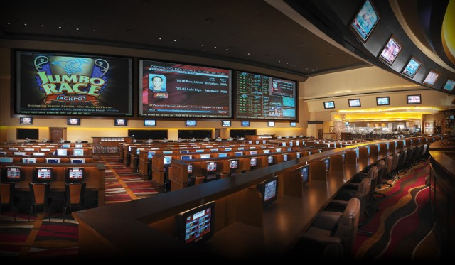 mlb race biggest sportsbook in vegas