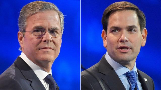 Bush Rubio